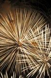 Fuego artificial en honor del Día de la Independencia Imágenes de archivo libres de regalías
