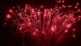 Fuego artificial en un río Celebración del Año Nuevo almacen de video