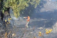 Fuego bajo de la escala de la isla de Zakynthos en volimes el 3 de julio de 2013, Grecia Imagen de archivo libre de regalías