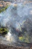 Fuego bajo de la escala de la isla de Zakynthos en volimes el 3 de julio de 2013, Grecia Fotos de archivo libres de regalías