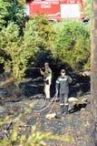 Fuego bajo de la escala de la isla de Zakynthos en volimes el 3 de julio de 2013, Grecia Fotografía de archivo
