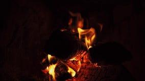 Fuego caliente en la leña seca en horno del ladrillo almacen de video
