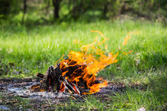 Fuego caliente en prado Imagen de archivo libre de regalías