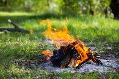 Fuego caliente en prado en bosque Imagenes de archivo