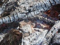 Fuego cerca del fuego, árbol que arde Fondo, concepto de la textura foto de archivo