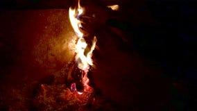 Fuego con la quema de las llamas almacen de metraje de vídeo