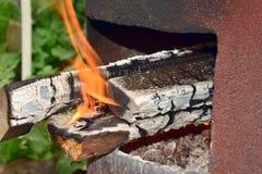 Fuego con leña en una distancia corta foto de archivo