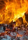 Fuego con leña Imagenes de archivo