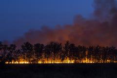 Fuego controlado foto de archivo libre de regalías