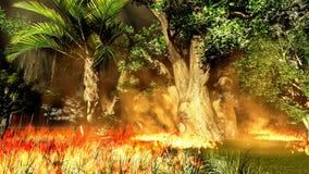 Fuego de Bush Fotografía de archivo