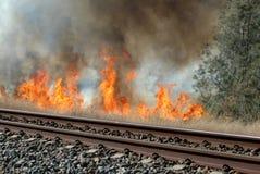 Fuego de Bush Imagen de archivo