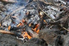 Fuego de la asación Fotos de archivo libres de regalías