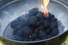 Fuego de la barbacoa Foto de archivo