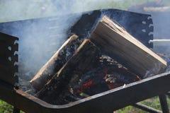 Fuego de la barbacoa imagen de archivo