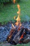 Fuego de la barbacoa fotografía de archivo libre de regalías