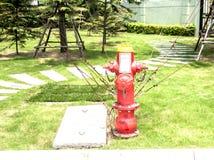 Fuego de la columna de WƯater Fotos de archivo