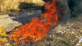 Fuego de la llama de la cámara lenta y fumar la pérdida ardiente de la basura de plástico a la contaminación atmosférica en fondo almacen de metraje de vídeo