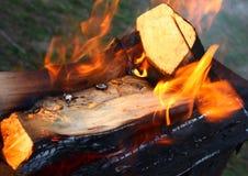 Fuego de la madera Foto de archivo