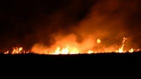 Fuego de la noche en el campo metrajes
