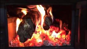 Fuego de madera almacen de metraje de vídeo
