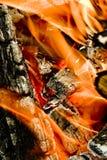 Fuego de madera Fotos de archivo