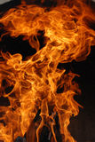 Fuego de madera dentro del horno Imágenes de archivo libres de regalías