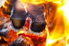 Fuego de muerte del carbón de leña en la parrilla imagenes de archivo