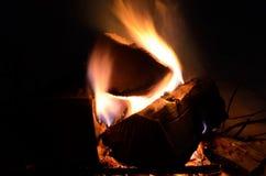Fuego de registro ardiente del abedul en naturaleza del invierno Fotografía de archivo libre de regalías