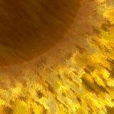 Fuego de Sun Fotografía de archivo
