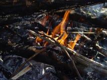 Fuego del árbol de la rama foto de archivo