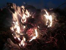 Fuego del Bon imagen de archivo libre de regalías
