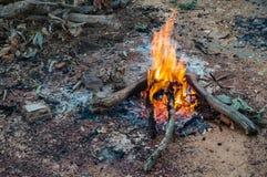 Fuego del campo Fotografía de archivo