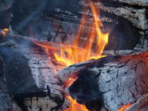 Fuego del campo Fotos de archivo libres de regalías