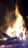 Fuego del campo en bosque Imagen de archivo libre de regalías