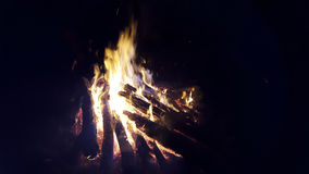 Fuego del campo en bosque Fotos de archivo