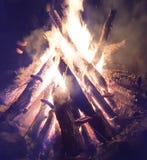 Fuego del campo en bosque Fotografía de archivo libre de regalías
