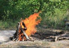 Fuego del campo en bosque Imagenes de archivo