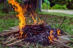 Fuego del campo en la noche Imagenes de archivo