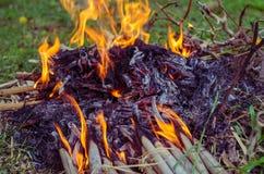 Fuego del campo en la noche Foto de archivo libre de regalías