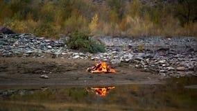 Fuego del campo en la orilla del río almacen de video