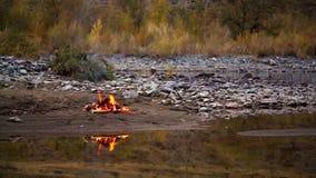 Fuego del campo en la orilla del río almacen de metraje de vídeo