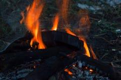 Fuego del campo por la tarde del verano fotografía de archivo libre de regalías