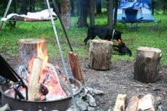 Fuego del sitio para acampar fotografía de archivo libre de regalías