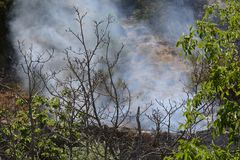 Fuego del verano, Italia del sur Imagenes de archivo
