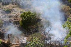 Fuego del verano, Italia del sur Fotos de archivo libres de regalías