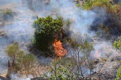 Fuego del verano, Italia del sur Imagen de archivo libre de regalías