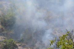 Fuego del verano, Italia del sur Fotografía de archivo