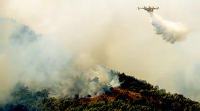 Fuego en áreas del bosque en Beocia en Grecia central foto de archivo libre de regalías