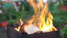 Fuego en barbacoa almacen de video