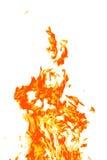 Fuego en blanco Fotos de archivo